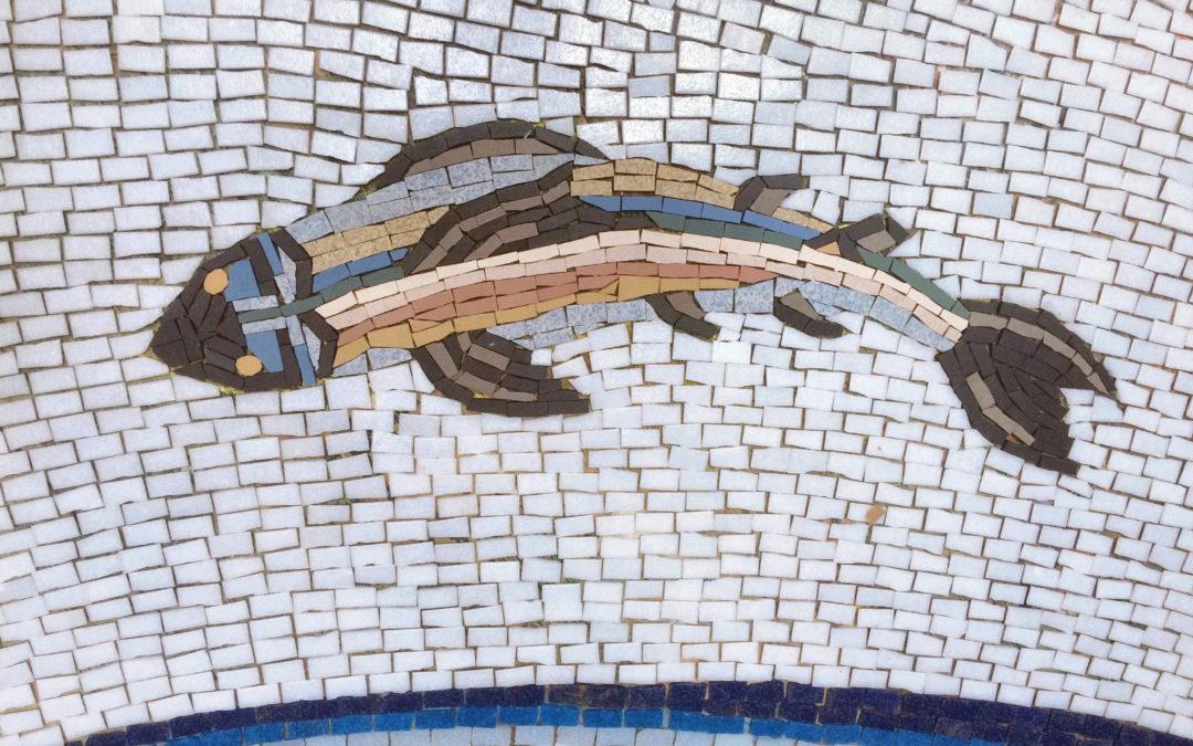 Garance Mosaïque aux murs et aux sols